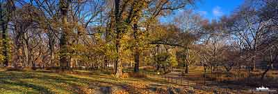 New York Central Park - Autumn