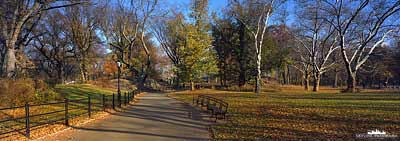 Panorama Central Park - Autumn
