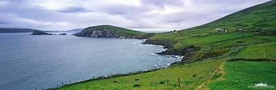 Dingle Halbinsel - Panorama