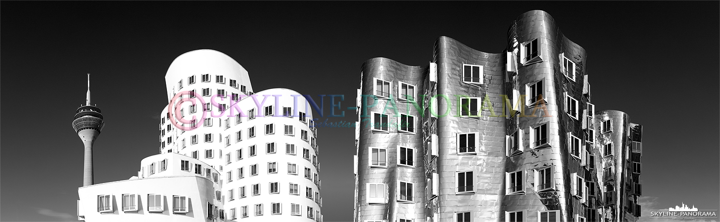 gehry bauten in schwarz weiss p 00763 skyline. Black Bedroom Furniture Sets. Home Design Ideas