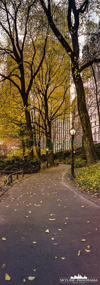 New York vertikal - Ein Panorama im Format 6x17 aus dem herbstlichen Central Park im Herzen von Manhattan New York City.