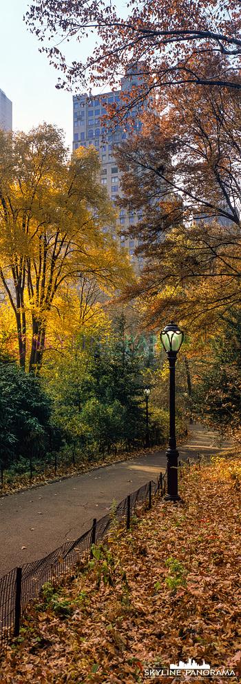 New York City vertikal - Eine Ansicht aus dem herbstlichen Central Park im Herzen New Yorks im vertikalen Panoramaformat 6x17.