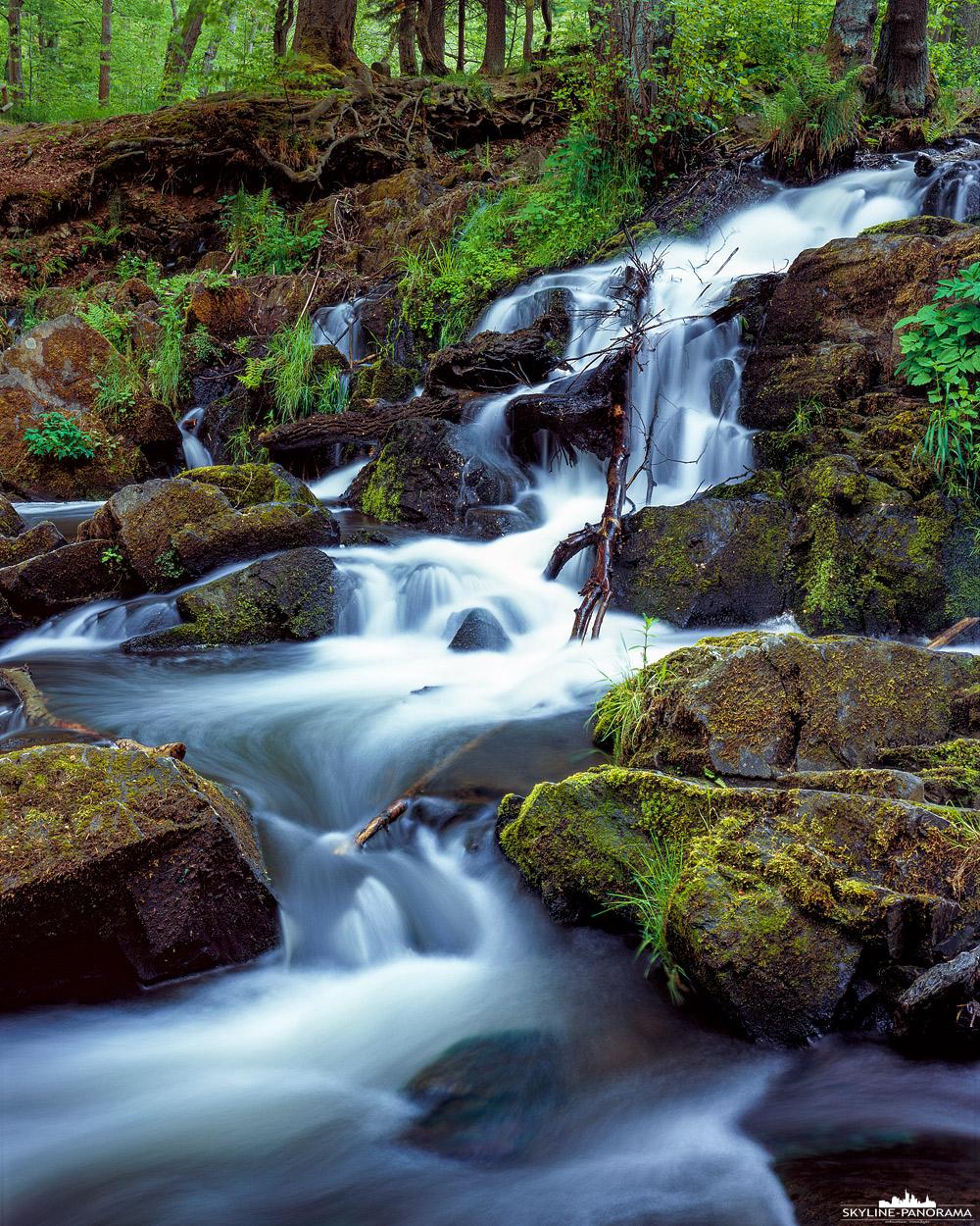 """Bilder aus dem Harz - Wasserfall der Selke im 4x5"""" Großformat als Langzeitbelichtung. Der Wasserfall liegt an der Bundesstraße, kurz vor dem Ort Alexisbad im Harz."""