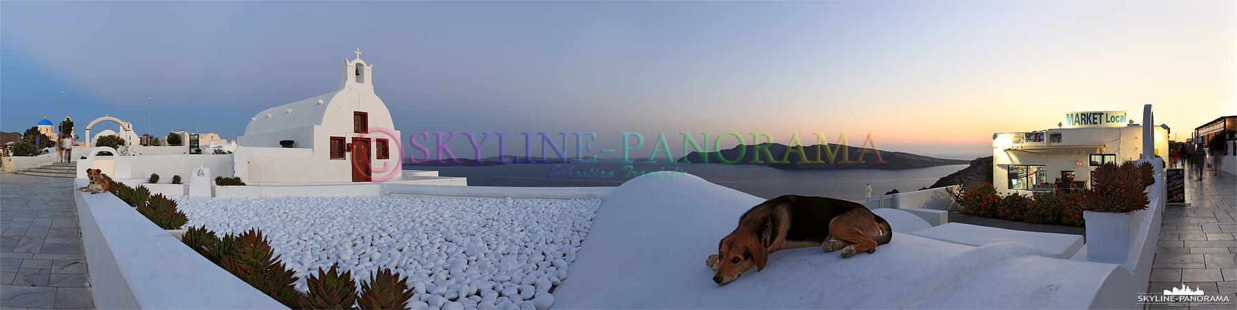Sonnenuntergang Santorini - Ein typischer Anblick zur Dämmerung, ein paar freilaufende Hunde trifft man in Oia oft an, hier gesehen auf dem Kraterrandweg.