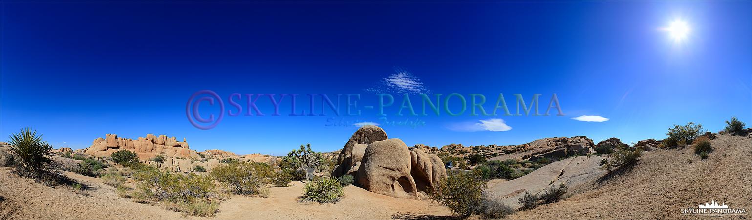 Bilder aus dem Joshua Tree Nationalpark - Der Joshua Tree Nationalpark befindet sich circa 90km nordöstlich von Palm Springs im US Bundesstaat Kalifornien ...