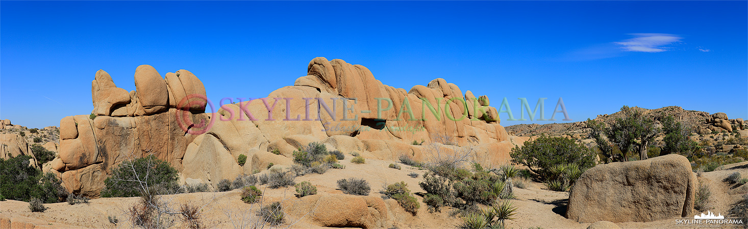 Joshua Tree Nationalpark - einer der Schönsten der USA - Die Felsformationen in dem hier gezeigten Teil des Joshua Tree Parks tragen den Namen Jumbo Rocks.