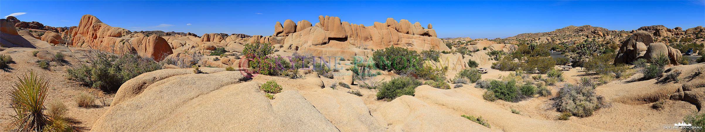 Bilder aus dem Joshua Tree Nationalpark - Der Park bietet seinen Besuchern eine sehenswerte Mischung aus Gesteinsformationen und Wüstenlandschaft...