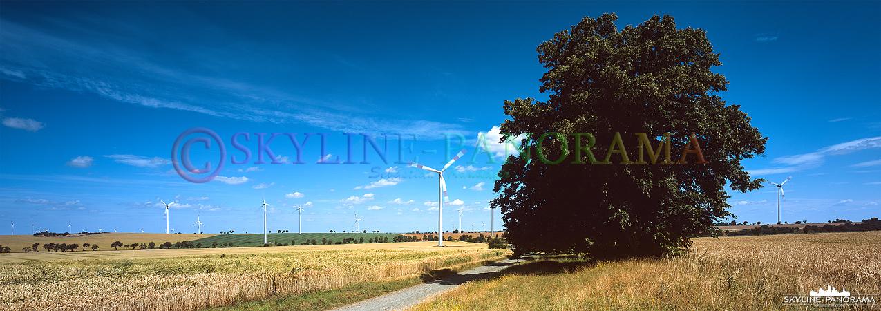 Windkraftanlagen als Panorama zusammen mit einem sommerlichen Getreidefeld.
