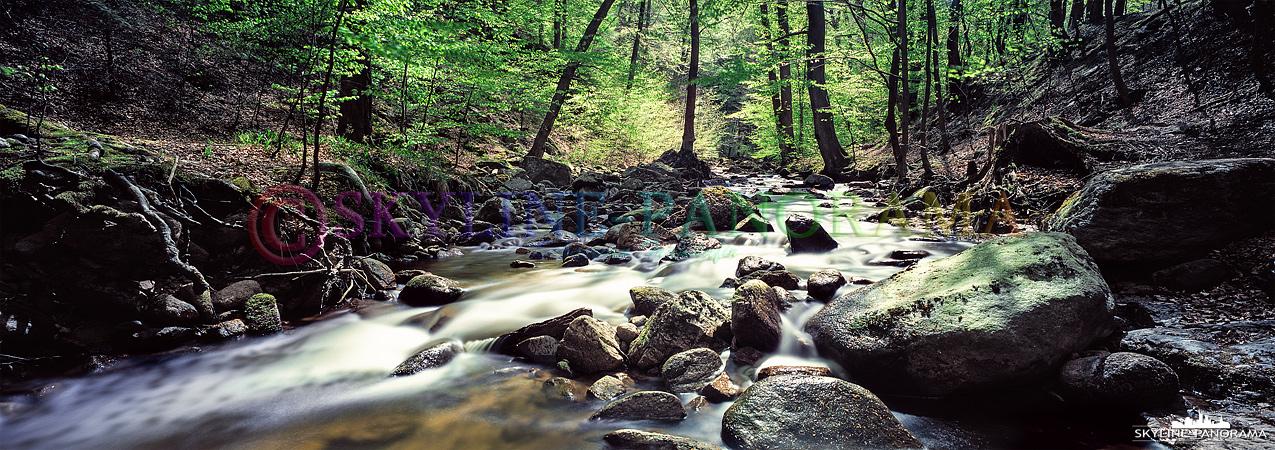 Ein Panorama aus dem Ilsetal bei Ilsenburg im Harz, es handelt sich bei dieser Aufnahme um ein Panorama im Format 6x17, welches als Langzeitbelichtung aufgenommen wurde.