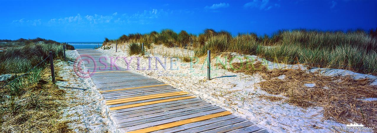 Bilder Nordsee - Der Weg zum Strand führt vom Ortskern aus durch einen, oft mehrere hundert Meter breiten, Dünenstreifen.