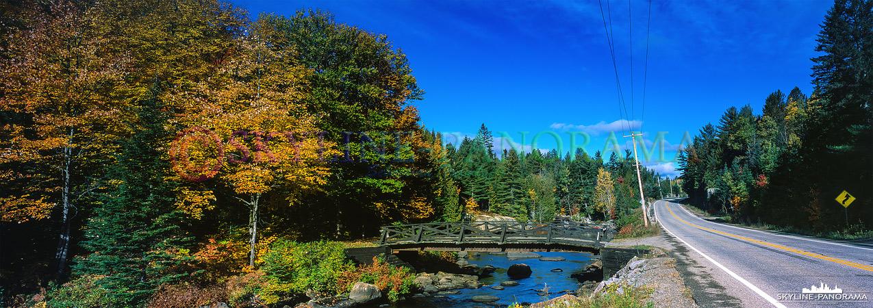 6x17 Panorama aus Kanada - Herbstwald und eine Straße in Kanada.