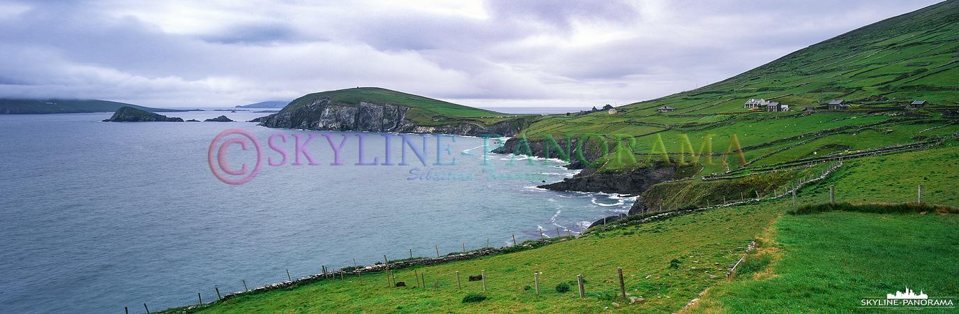 6x17 Panorama - Unterwegs auf der Dingle Halbinsel von Irland, hier am südwestlichsten Zipfel ein Blick auf einen Teil der Blaskets Inselgruppe vor Dingle.