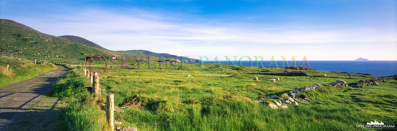 6x17 Panorama - Diese Aufnahme entstand unterwegs am Skellig Ring und zeigt den Blick in die satt grüne Landschaft von Irland.