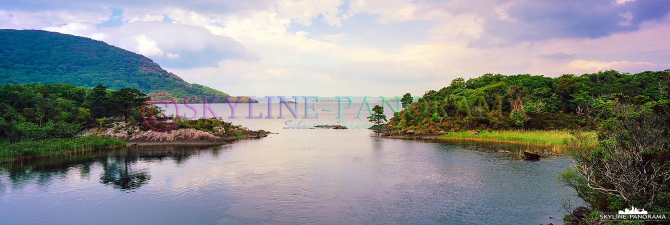 6x17 Panorama Irland - Diese Aufnahme entstand auf dem Rundwanderweg um den Muckross Lake im Killarney National Park.