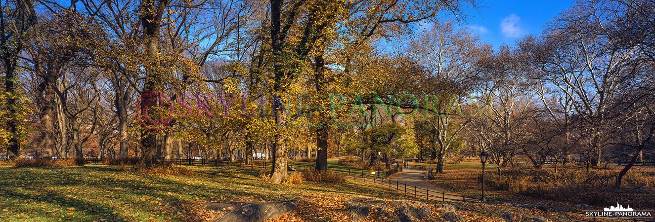 6x17 Panorama - Auch Anfang Dezember kann man Glück haben und noch etwas vom goldenen Herbst im New Yorker Central Park genießen.