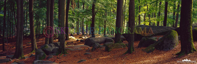 6x17 Panorama - Diese Aufnahme entstand unweit des Altarsteins am Felsenmeer im hessischen Odenwald.