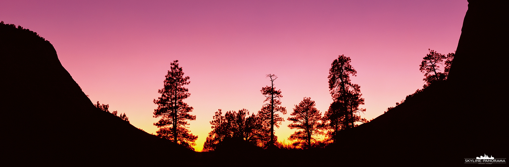 Silhouette von Bäumen - Unterwegs im Ostteil des Zion, kurz vor dem Ausgang, am letzten Parkplatz des Nationalparks entstand diese Sunset Silhouette im 6x17 Panoramaformat.