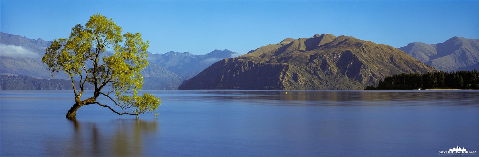 """Neuseeland Panorama - Der bekannteste Baum von Neuseeland ist der, meist im Wasser des Lake Wanaka stehende, Baum, der weltweit unter der Bezeichnung """"That Wanaka Tree"""" bekannt ist. Dies gilt zumindest für Landschaftsfotografen, die wie ich, extra für dieses Bild an den Lake Wanaka gereist sind."""