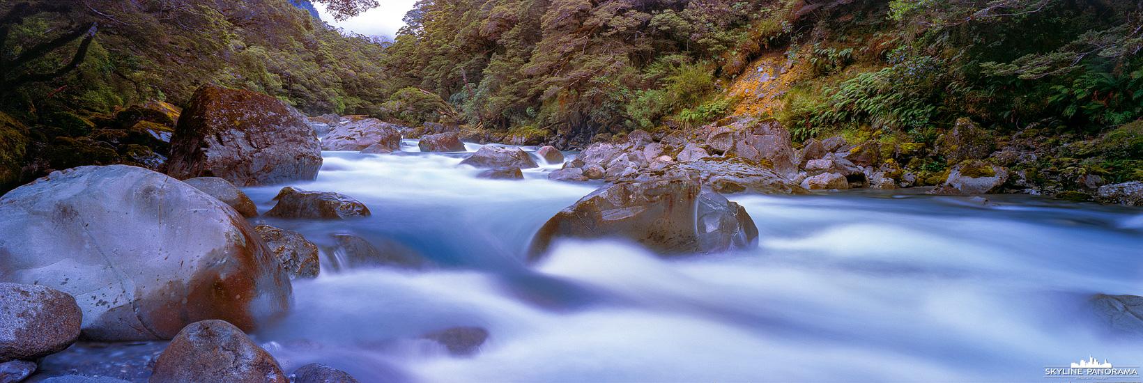 Neuseeland Südinsel Panorama 6x17| Auf dem Weg von Te Anau zum Milford Sound, kurz vor dem Tunnel, geht der Te Anau Milford Highway entlang des Hollyford Rivers