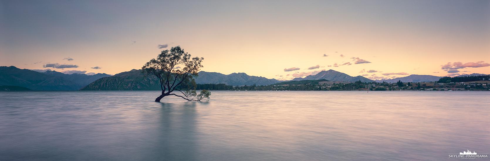 6x17 Panorama Neuseeland - Der berühmte einsame Baum vom Lake Wanaka auf der Südinsel von Neuseeland, ist hier noch in seiner urspünglichen Schönheit zu sehen. Mittlerweile wurde der Wanaka Tree leider an einem Ast beschädigt, wodurch er etwas von seinem malerischen Aussehen verloren hat.