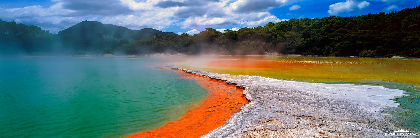 Panorama Neuseeland - Der Campagne Pool im Wai-O-Tapu Thermal Wonderland ist eine der Sehenswürdigkeiten der Nordinsel von Neuseeland, die man unbedingt auf seine Liste haben sollte. Der Pool gehört zu den größten Thermalquellen von Neuseeland, ist jedoch nicht für ein Bad geeignet.