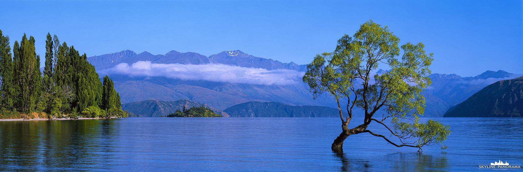 Neuseeland in 6x17 - Ein weiteres Panorama von einem wunderbaren Sommermorgen am Lake Wanaka auf der Südinsel von Neuseeland. Die idyllische Kulisse mit den Neuseeländischen Alpen im Hintergrund und dem malerischen Baum im See machen diesen Ort unvergessen.