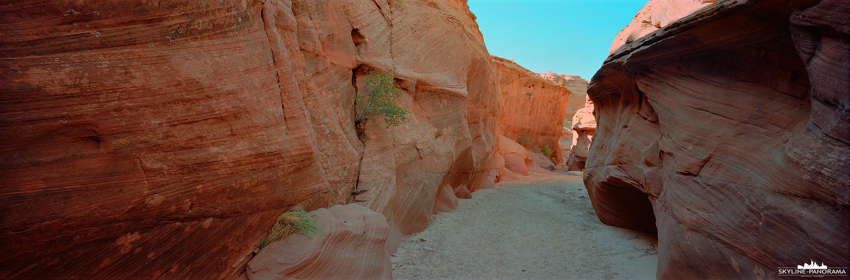 Blick in den Slot Canyon des Waterhole Canyons in Page Arizona. Das 6x17 Panorama entstand auf einer Fotografentour von Waterhole Canyon Experience, bei der man ausreichend Zeit hatte mit einer großformatigen Panoramakamera, wie die Shen Hao PTB 617, zu fotografieren.